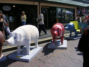 Parading_pigs_pearls_before_swine_p