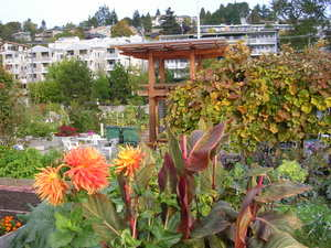 Interbay_ppatch_oct_2007