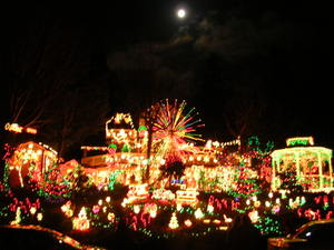 Christmas_lights_in_normandy_park_2